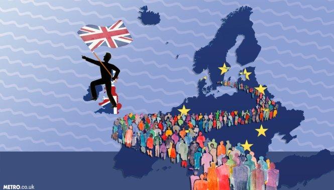 mg-brexit-followers